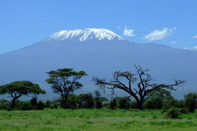 7 Days 6 Nights Roof of Africa Trekking