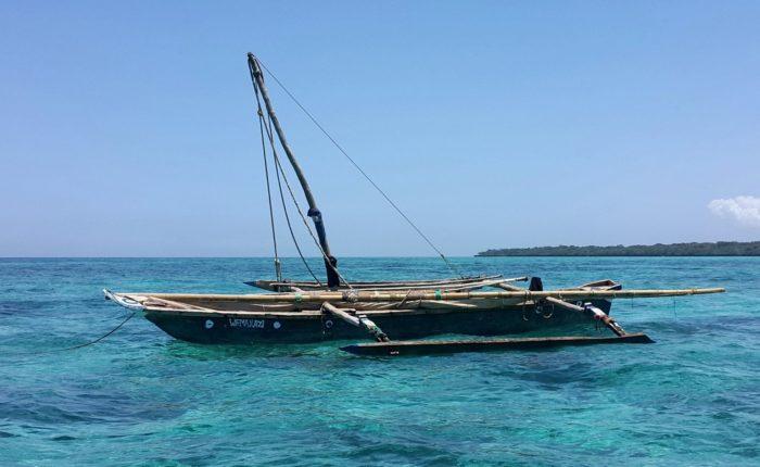 9 Days 8 Nights Tanzania Safari and Zanzibar Beach Holiday