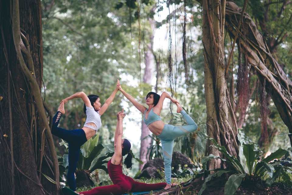 safari yoga