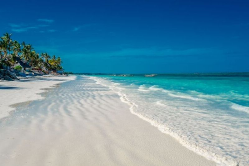 Pongwe Beach. Beaches In Zanzibar How To Choose Based On Your Interest. Leadwood Expeditions