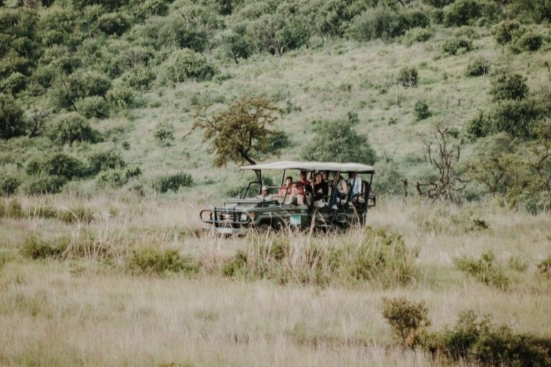 Group Joining Game Drive. What To Expect In A Group Joining Safari Tour. Leadwood Expeditions
